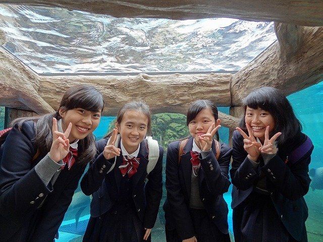 京都水族館_(5)